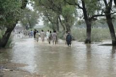 29.Pakistan.Alluvioni 2010.jpg