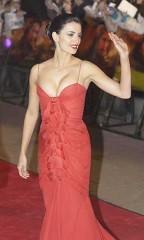 USA.Actress Penelope Cruz.Jan.04.jpg