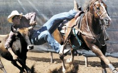 Fort Collins,Colorado,USA.Rodeo show..jpg