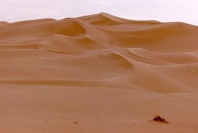 40.Deserto del Gobi.jpg